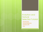 PPT Evolution and Natural Selection Tutorial