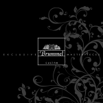 book brummel 2010 low res