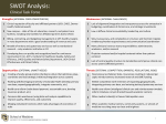 SWOT Analysis SOM Task Forces - University of Colorado Denver