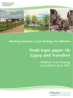 Draft topic paper 18: Gypsy and Travellers