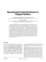 Microfabricated packed-bed reactor for phosgene synthesis.