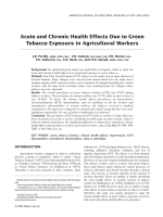 Acute and chronic health effects due to green tobacco exposure in agricultural workers.