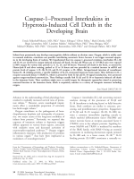 Caspase-1Цprocessed interleukins in hyperoxia-induced cell death in the developing brain.