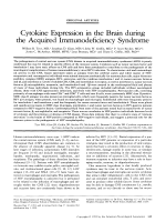 Cytokine expression in the brain during the acquired immunodeficiency syndrome.