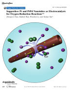 Supportless Pt and PtPd Nanotubes as Electrocatalysts for Oxygen-Reduction Reactions.