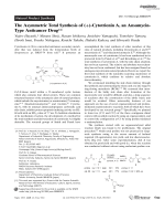 The Asymmetric Total Synthesis of (+)-CytotrieninA  an Ansamycin-Type Anticancer Drug.