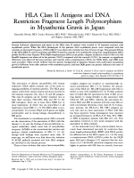 HLA class II antigens and DNA restriction fragment length polymorphism in myasthenia gravis in japan.