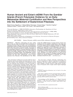 Human ancient and extant mtDNA from the Gambier Islands (French polynesia)  Evidence for an early Melanesian maternal contribution and new perspectives into the settlement of Easternmost Polynesia.