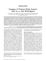 Imaging of human brain lesions with an 3 site radioligand.