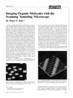 Imaging Organic Molecules with the Scanning Tunneling Microscope.