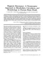 Magnetic resonance  A noninvasive approach to metabolism  circulation  and morphology in human brain death.