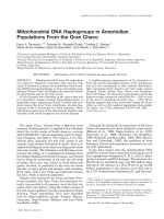 Mitochondrial DNA haplogroups in Amerindian populations from the Gran Chaco.
