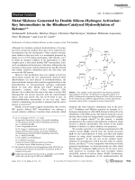 Metal Silylenes Generated by Double SiliconЦHydrogen Activation  Key Intermediates in the Rhodium-Catalyzed Hydrosilylation of Ketones.