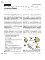 Tumor-Targeting Gold Particles for Dual Computed TomographyOptical Cancer Imaging.