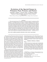 Evolution of the special senses in primatesPast present and future.