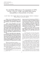 Sex and ethnic differences in the association of ASPN CALM1 COL2A1 COMP and FRZB with genetic susceptibility to osteoarthritis of the knee.