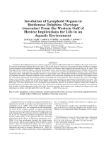 Involution of lymphoid organs in bottlenose dolphins Tursiops truncatus from the western Gulf of MexicoImplications for life in an aquatic environment.
