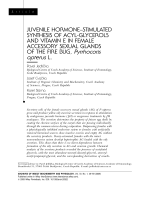 Juvenile hormone Уstimulated synthesis of acyl-glycerols and vitamin E in female accessory sexual glands of the fire bug  Pyrrhocoris apterus L.