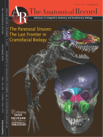 The Paranasal SinusesThe Last Frontier in Craniofacial Biology.
