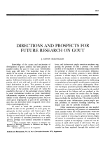 Directions and prospects for future research on gout.