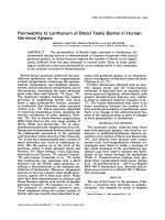 Permeability to lanthanum of blood testis barrier in human germinal aplasia.