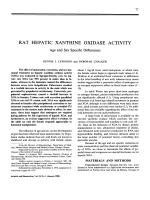 Rat hepatic xanthine oxidase activity.