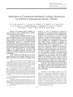 Stimulation of chondrocyte-mediated cartilage destruction by S100A8 in experimental murine arthritis.