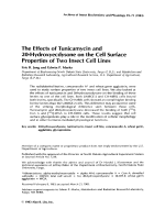 The effects of tunicamycin and 20-hydroxyecdysone on the cell surface properties of two insect cell lines.