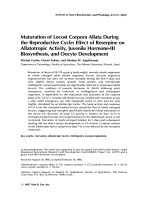 Maturation of locust corpora allata during the reproductive cycleEffect of reserpine on allatotropic activity juvenile hormone-III biosynthesis and oocyte development.