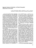 Spatial limits of activity of fetal gonadal inductors in the rat.