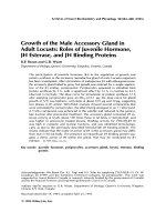 Growth of the male accessory gland in adult locustsRoles of juvenile hormone JH esterase and JH binding proteins.